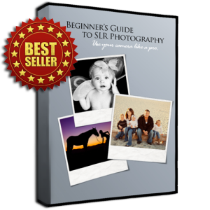 400 px slr photography box best seller